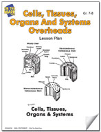 Cells, Tissues, Organs & Systems Overheads Lesson Plan