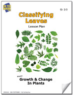 Classifying Leaves Lesson Plan