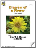Diagram of a Flower Lesson Plan
