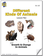 Different Kinds of Animals Lesson Plan
