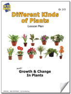 Different Kinds of Plants Lesson Plan