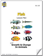 Fish Lesson Plan