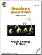 Growing a Bean Plant Lesson Plan