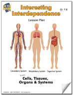Interesting Interdependence Lesson Plan