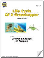 Life Cycle of a Grasshopper Lesson Plan