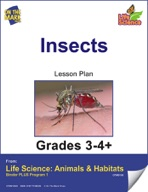 Life Science Animals & Habitats - Insects & Spiders e-lesson plan & Reading Folder
