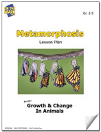 Metamorphosis Lesson Plan