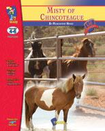 Misty of Chincoteague Lit Link: Novel Study Guide (Enhanced eBook)