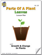 Parts of a Plant - Leaves Lesson Plan