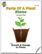 Parts of a Plant - Stems Lesson Plan