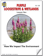 Purple Loosestrife & Wetlands Lesson Plan