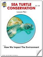 Sea Turtle Conservation Lesson Plan