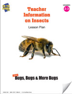 Teacher Information on Insects Lesson Plan