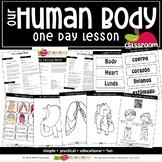 OUR HUMAN BODY Preschool PreK Kindergarten 1-Day Lesson Plan