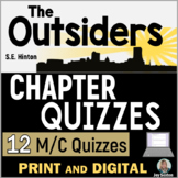 OUTSIDERS Chapter Quizzes - 12 M/C Quick Assessments (S.E. Hinton)