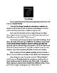 OVERVIEW: Agent Darcy and Ninja Steve: The Grammar Adventures!