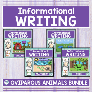 OVIPAROUS ANIMALS BUNDLE - Sea Turtle, Chickens, Owls and Frogs