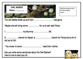 OWL BABIES RESOURCES