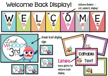OWL Classroom Theme Bundle - Editable