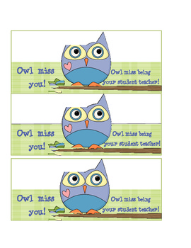 image regarding Owl Miss You Printable titled Owl Skip On your own Tags Worksheets Education Materials TpT