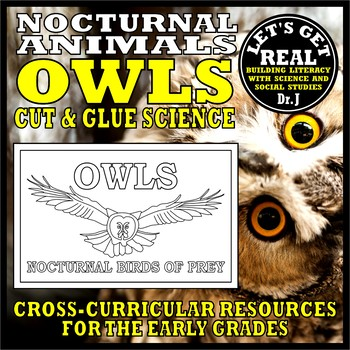 Image of: Prey Nocturnal Animals Owls cut Glue Science Teachers Pay Teachers Nocturnal Animals Owls cut Glue Science By Lets Get Real Tpt