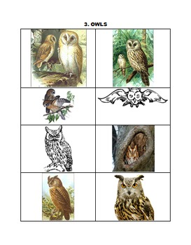 OWLS FOR TEACHERS, STUDENTS, AND CLASSROOMS (Back To School Handy)