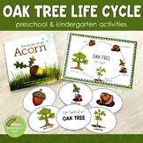 Oak Tree Life Cycle Set - Preschool & Kindergarten