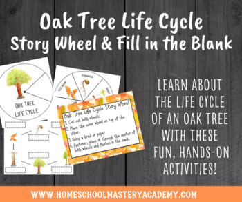 Oak Tree Life Cycle Story Wheel Activity