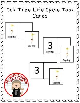 Oak Tree Life Cycle Task Cards