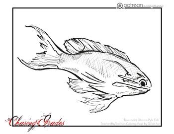 Obama Fish - Coloring Page