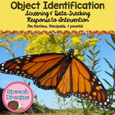 Object Identification {Autism Matching Data}