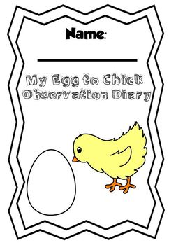 Observation Chicken Diary