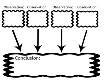Observation Conclusion Graphic Organizer