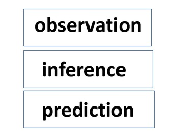 Observation, Inference, or Prediction?
