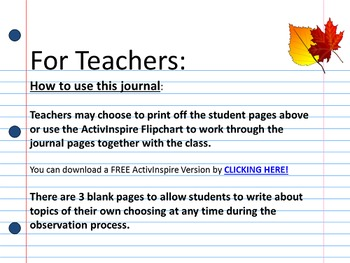 Observation Journal (Fall Tree & Leaf)