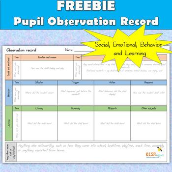 Observation Record - Social, Emotional and Behavior