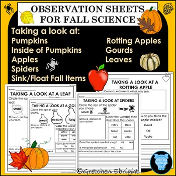 Observation Sheets for Fall Science - Leaves, Apples, Gourds, Pumpkins, Spiders