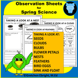 Observation Sheets for Spring Science: Nests, Clouds, Seeds, Eggs, Petals & more