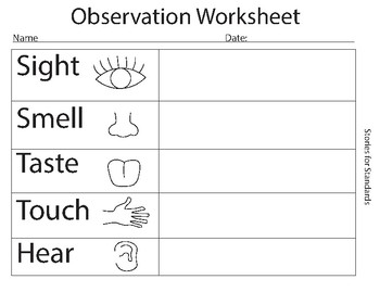 Observation Worksheet K-2