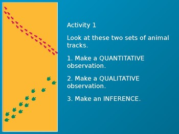 Observation and Inference Activities