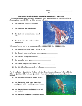 Observation and Inferences practice
