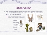 Observation notes - skeletal/fill in the blank and complete