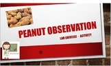 Observation of a Peanut Lab/Activity