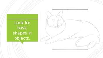 Observational Drawing Tips Presentation