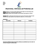 Observations, Inferences, and Predictions Activity Worksheet