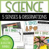 Observations and Five Senses Worksheets and Google Slides Bundle