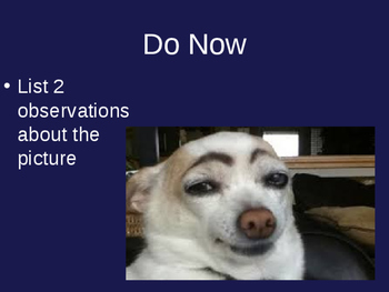 Observations and Inferences Powerpoint
