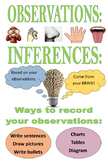 Observe and Infer