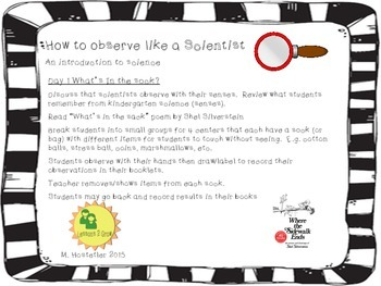 Observe like a Scientist!