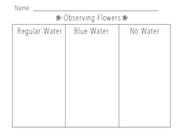 Observing Flowers Recording Sheet Science